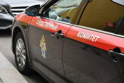 СК начал проверку после пожара с четырьмя пострадавшими детьми в Подмосковье