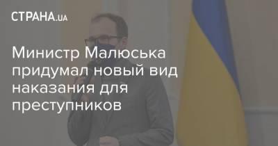 Министр Малюська придумал новый вид наказания для преступников