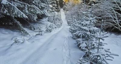 Лютый мороз в Латвии: столбик термометра опустился ниже -30 градусов