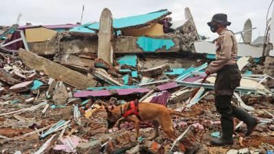 Число жертв землетрясения в Индонезии приблизилось к 80