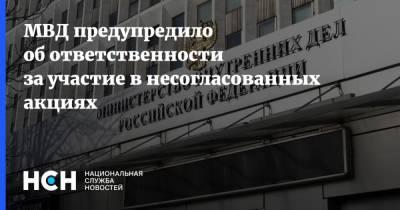 МВД предупредило об ответственности за участие в несогласованных акциях