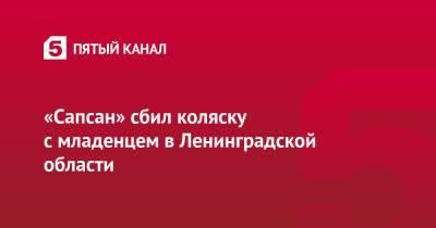 «Сапсан» сбил коляску с младенцем в Ленинградской области