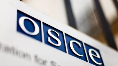 ОБСЕ приостановила наблюдательную миссию на Донбассе