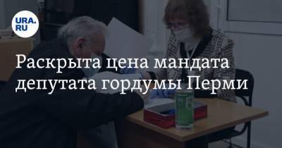 Раскрыта цена мандата депутата гордумы Перми