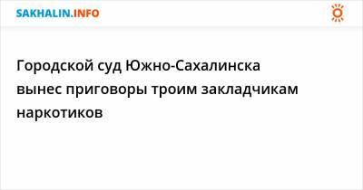 Городской суд Южно-Сахалинска вынес приговоры троим закладчикам наркотиков
