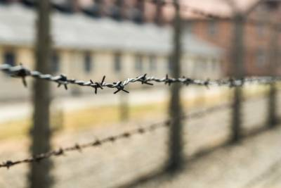 Портал «Архивы России» представил сборник документов о преступлениях нацистов в СССР