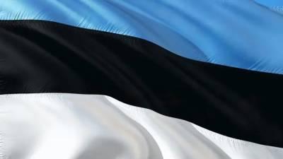 Эстония объявила о готовности дать убежище Навальному