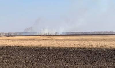 Еще в трех районах Тюменской области вводят специальный противопожарный режим