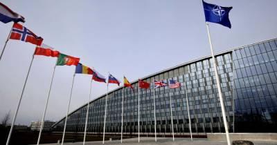 Саммит НАТО: в Зеленского рассказали, почему Украина не получила приглашение