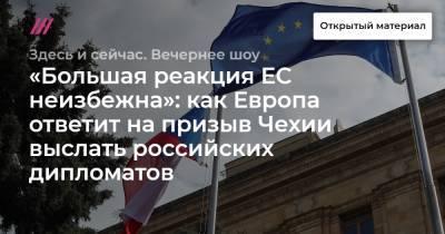 «Большая реакция ЕС неизбежна»: как Европа ответит на призыв Чехии выслать российских дипломатов