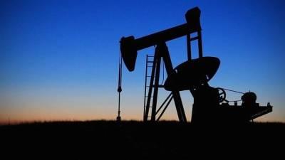 Россия начала снижать добычу нефти