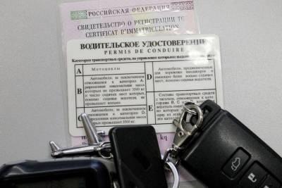 В Воронежской области пьяный водитель накинулся на полицейского