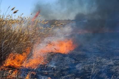 МЧС предупреждает астраханцев о чрезвычайной пожароопасности