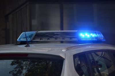 В Петербурге на стройплощадке ЖК «Ручьи» обнаружили пехотный огнемет