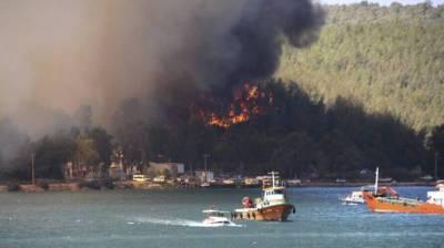 Украинцев призвали воздержаться от поездок в Турцию из-за масштабных пожаров