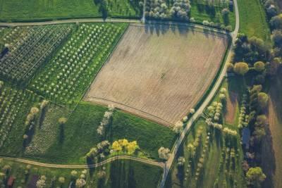 Министр агрополитики назвал цену за гектар земли