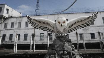Убийца семьи из Белозерска потребовал перевести его из «Полярной совы» в «Белозерский пятак»