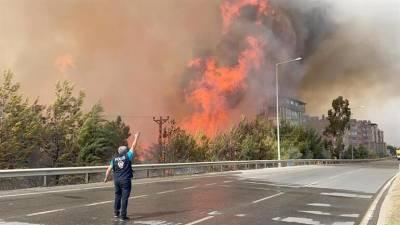 В результате пожаров в Турции погибли четыре человека